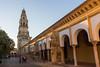 Patio Los Naranjos Córdoba (José A. Conde) Tags: 2017 córdoba mezquita mezquitadecordoba