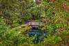 Jardin botanico, Gijon (ton21lakers) Tags: jadin botanico gijon asturias españa toño escandon canon tamron naturaleza agua paseo vegetacion