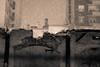 Sivi grad (petrovicka95) Tags: belgrade snow december winter motion building ruins creepy wall monochrome sepia black