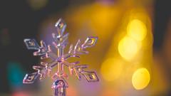 Let it snow (- A N D R E W -) Tags: snow nieve winter invierno dof depth bokeh lights luz color colorful vibrant sony ilce7rm2 alpha mirrorless a7rii emount macro closeup ricoh rikenon 50mm f2 snowflake ornament macromondays litbycandlelight hmm