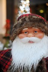 i-can-hear-the-sleigh-bells-ringing (Don Pedro de Carrion de los Condes !) Tags: donpedro d700 kleuren kerst kerstmis kerstmarkt kerstman kerstpop lichtjes baard noel weihnachten perenoel christmas
