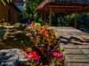 Tranquility (shamahzoha) Tags: nature rocks shade structure straws wooden bricks bench flowers green pink moss fern trees shadows vibrant colorful colors fuchsia houses cottages sunny day daylight