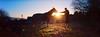 Light Touch (Danielle Bednarczyk) Tags: horse sunset silhouette film fuji hasselblad xpan animal farm pasture serene kodak ektar ektar100