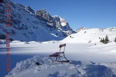 Frohe Festtage wünsche ich euch allen (Priska B.) Tags: frohe festtage weihnachten 2017 schweiz switzerland swiss svizzera trübsee nidwalden