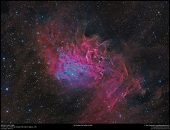 Flaming Star (IC405 (Terry Hancock www.downunderobservatory.com) Tags: qhy qhy367c astrophotography astroimaging space sky cosmos
