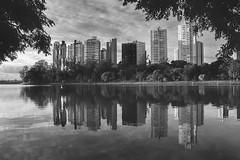 Igapó lake (marcelo.guerra.fotos) Tags: igapólake lagoigapó lake landscape londrina paraná photography photo pretoebranco blackandwhite blancoynegro