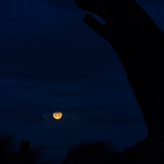 Colorful full moon in the distance thumbnail