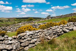 Dartmoor dry stone walls