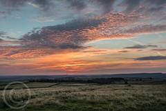 Hills and Moors Aug 28th 2017  (1) (Mark Schofield @ JB Schofield) Tags: sunset sunrise moors moorland agriculture meltham huddersfield yorkshire landscape canon eos 5dmk4 emley mast harden moss pennines hills fields farmland westnab heather august