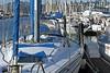 Back from the Sea (or Bay) (AntyDiluvian) Tags: sanfrancisco california sausalito marina sausalitoyachtharbor dock sailboats masts boats sanfranciscobay furledsail