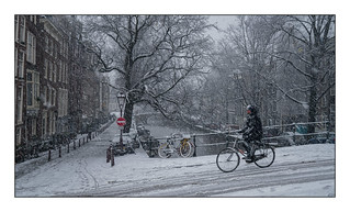 Amsterdam - riding your bike in the snow