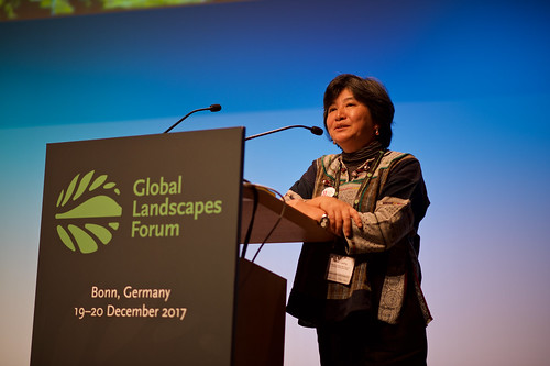 Joan Carling. Co-convenor, Indigenous Peoples Major Group for the SDGs