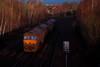 Big Light on... (marcus.45111) Tags: dbc 66164 class66 gm moderntraction train railway diesel autumnsun autumncolours 0e23 flickr flickruk canonrailwayphotography canondslr canon5dmk11 2017