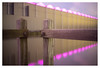 Westland by night _ 5 (leo.roos) Tags: pink yellow ditch sloot roze geel reflection weerspiegeling lightpollution lichtvervuiling kassen hothouses greenhouses westland longexposure tijdopname fedmikron фэдмикрон helios893019 russianlens sovietglass fixedlens adaptedtoemount a7rii darosa leoroos xif