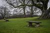 Which Bench? (Stockografie) Tags: a7ii manual solitude sony stuttgart minoltamd50mmf2