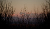 Silhouttes (Miyara Sohsai) Tags: carso silhouette mountains