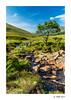 Along the path to Fairy Pools - 2 (germano manganaro) Tags: uk unitedkingdom scotland scozia schottland escocia écosse highlands innerhebrides skye glenbrittle river brittle fairypools landscape paesaggio