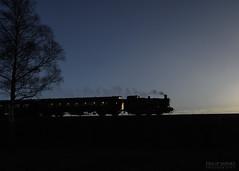 1501 Pannier Tank (Philip Moore Photography) Tags: 1501 panniertank locomotive severnvalleyrailway svr bewdley kidderminster worcestershire steam steamtrain train railway heritage silhouette devil'sspittlefulnaturereserve