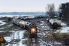 SRY 128 ~ Wellcox Yard, Nanaimo (Chris City) Tags: train railway railroads shortline switching yard en sry svi icf gp9 nanaimo