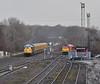 50008 at Kingsbury (robmcrorie) Tags: 4z03 derby okehampton rail grinder 60007 class 50 60 50008 d408 thunderer loram uk operations railway train kingsbury shunting from warwickshire branch junction