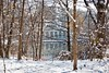 Winter hideaway (Litratistica Images NYC) Tags: reflection canon70200mm canon5dmark2 house water hidden boathouse twigs snow litratisticaimages prospectpark nyc brooklyn