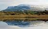 Darty Mountains From Bunduff Lough, Co. Sligo (Brian Carruthers-Dublin-Eire) Tags: countysligo cosligo sligo ireland eíre reflection mirror mirrorreflection scenic view scenicview mountain dartry mountains dartrymountains yeats country yeatscountry county geological site countygeologicalsite geologicalsite geology 526m1726ft bunduff lough bundufflough