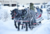 Horse Drawn Sleigh (trident2963) Tags: banff lake louise canada canadian winter snow ice fairmont springs chateau fineart review flurry horse drawn sleigh christmas horses hotel travel recommendations firepit icecastle icebar maple syrup light sculpture blizzard