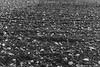 "Monasterio de Armedilla - Valladolid (Cara B de ""Ruben_HC | ruheca.com"") Tags: pãºrpura ©rubenhcruhecacom abandono armedilla arquitecturaymucho expolio fotografia fotografíadearquitecturaymucho gotico lugares monasterio monumentos paisaje patrimonio photography piedra religiosa religioso rubenhernandezcarretero rubenhc ruheca ruhecacom ruina segovia turismo valladolid"