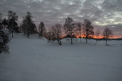 Norwegian narure (steffos1986) Tags: nature sunset snow landscape landschaft nikon2880af nikond800 sundown light shadows countryside norway explore expression norwegen noruega animaltraces traces trees sun color contrast red yellow blue