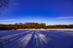 ... walking on the ice (mariola aga) Tags: winter lake forest trees sky snow ice light shadows traces footsteps thegalaxy saariysqualitypictures