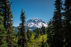 Mount Rainier Thru The Trees (Justy.C) Tags: cascademountainrange landscapephotography mountrainiernationalpark summer tolmiepeaktrail usnationalpark ashford washington unitedstates us