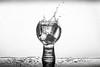 ice (rich lewis) Tags: mono monochrome blackandwhite highspeedphotography liquid liquidart richlewis