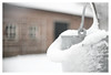 Bearded bucket (leo.roos) Tags: bucket emmer snow sneeuw winter a7rii meyeroreston5018 zebra m42 1965 darosa leoroos