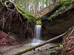 Wasserfall (Paramedix) Tags: waterfall wasserfall waldenbachschlucht rotenzimmern nature natur germany deutschland badenwürttemberg