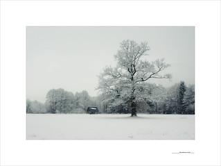 De invierno y luces