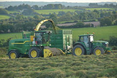 John Deere 7780i ProDrive filling a Broughan Engineering Trailer drawn by a John Deere 6150M Tractor (Shane Casey CK25) Tags: john deere 7780i prodrive filling broughan engineering trailer drawn 6150m tractor jd green fermoy second self propelled forage harvester silage silage17 silage2017 grass grass17 grass2017 winter feed fodder county cork ireland irish farm farmer farming agri agriculture contractor field ground soil earth cows cattle work working horse power horsepower hp pull pulling cut cutting crop lifting machine machinery nikon d7100 tracteur traktori traktor trator trekker ciągnik