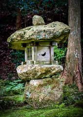 Sanzen-In, Kyoto re-edit (∞ monkeys with cameras - in limbo/no mojo) Tags: japan japan2006 kyoto ohara sanzenin reedit repost buddhism buddhist temple buddhisttemple