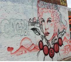 Chicago 36 (jadedirishgryphon) Tags: pilsen chicago hispanic mural streetart