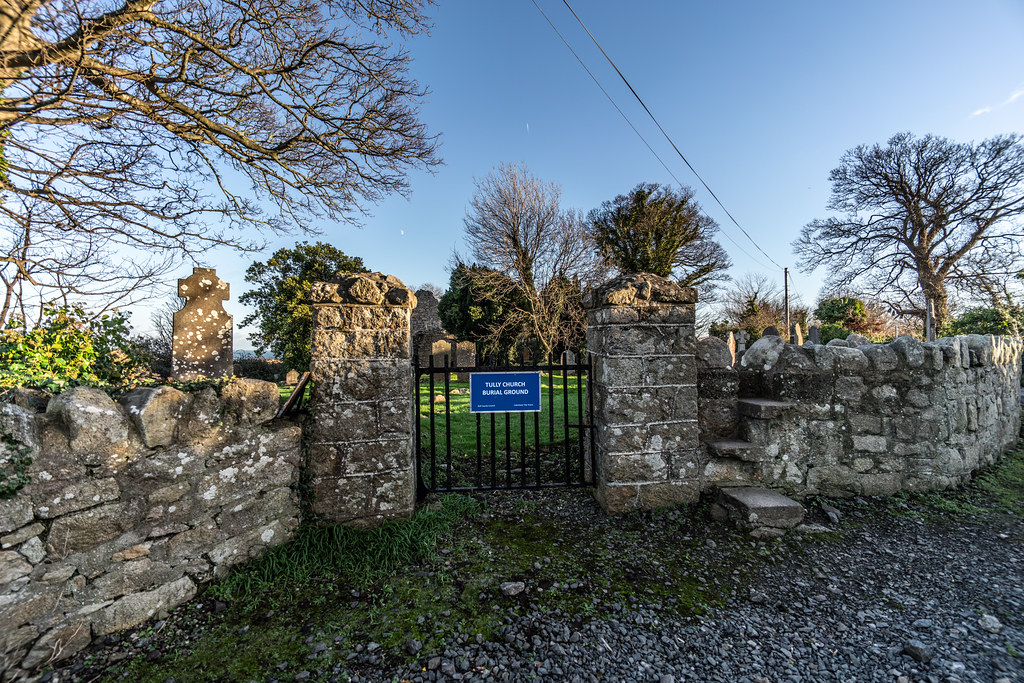 ANCIENT CHURCH AND GRAVEYARD AT TULLY [LAUGHANSTOWN LANE NEAR THE LUAS TRAM STOP]-134553