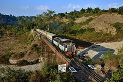 IN - 2017-11-22 - Kangra (Thomas Kabisch) Tags: india indianrailways kangra zdm3
