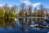 Strathaven Park 26 Dec 2017 00019.jpg (JamesPDeans.co.uk) Tags: boxingday landscape winter season prints for sale weather pond unitedkingdom man who has everything lanarkshire strathaven wwwjamespdeanscouk landscapeforwalls europe uk ice boatingpond plants nature reflection lake strathclyde snow trees digital downloads licence scotland sea pier gb park greatbritain tree britain james p deans photography