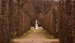 Gardens of Schönbrunn Palace (ScotchBroom) Tags: schönbrunn gardens park schönbrunnpalace statue sculpture hedgerows fall austria vienna wien österreich