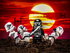 _MG_2044 (photo.bymau) Tags: bymau canon 7d 50mm 14 star war lego toys funy fun jouer little people jeux game macro proxy couleur colorfull
