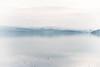_DSC2351 (samuel.w photography) Tags: inverness landscape seascape fog