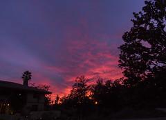 2017_12_10_la-sunset_26z