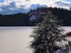 Stonehouse Pond Frozen (walter_g) Tags: sonya6000 minoltamc24mmf28 rawtherapee53 gimp296 nikcolorefexpro christmastree flyfishingonly