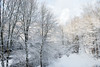 20171225 (Homemade) Tags: christmas whitechristmas snow winter nikkor2470mmf28 nikon2470mmf28 lewisboro southsalem newyork ny pond trees
