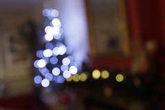_MG_0376 (Ettorebabs) Tags: christmas tree led albero di natale home casa