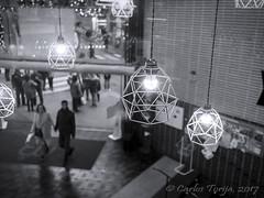 Latidos de Madrid (Carlos Torija) Tags: madrid chueca spain españa carlostorija people gente couple pareja streetphotography streetphotograph mercadodesanantón monochrome monocromático blackandwhite bn bw market city personas citylife lamps bombillas lámparas bulbs lights