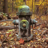 Fire Hydrant in the Woods (Dean OM) Tags: hasselblad 6x6 square fire hydrant fall fuji velvia 50 velvia50